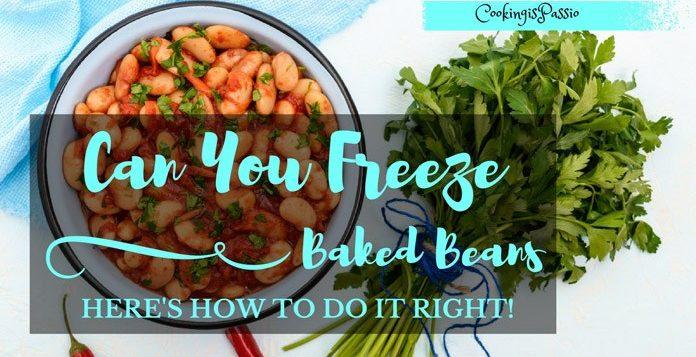 can you freeze tinned spaghetti